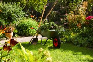 Thiriat catégorie Entretien du jardin